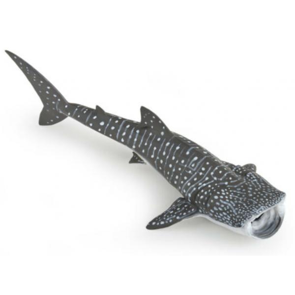 Joven Tiburón Ballena (papo)